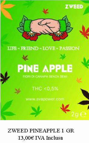 PINEAPPLE  canapa legale