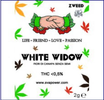 WHITEWIDOW canapa legale